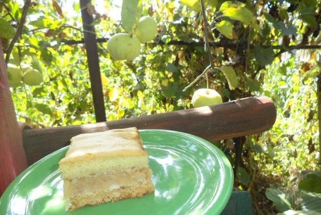 Prajitura cu mere si biscuiti bucataras